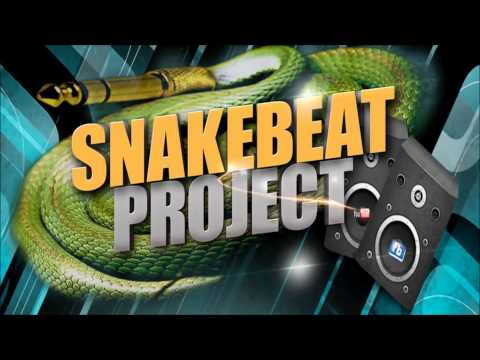 Snakebeat Project House Mix # 19 mixed bei DJ JackD